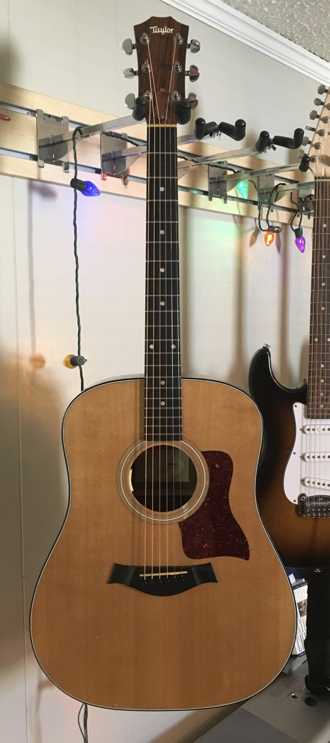 Andrew Timothy's Taylor 310